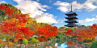 Nhật Bản: TOKYO – YAMANASHI – SHIZUOKA – KANAGAWA